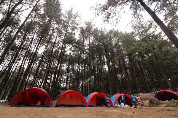 Paket Camping Gunung Pancar   Official Website Gunung Pancar