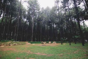 Camping Gunung Pancar