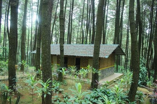 Tempat Camping di Bogor, Sentul, Gunung Pancar